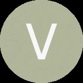 ViewData Logo Marque